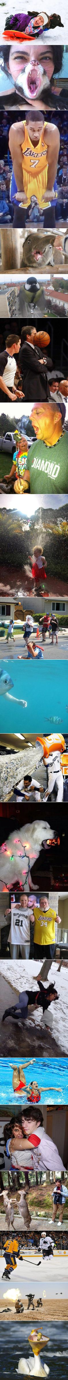 20 Images That Were Snapped at the Perfect Moment and Time - TechEBlog
