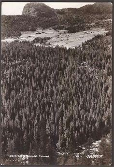 Åmotsdal i Telemark . Mittet 1818/15 Åmotsdal er en dal og ei bygd i Seljord kommune i Telemark. Åmotsdal er ei lita fjellbygd med om lag 75 husstandar i Seljord Kommune, Telemark. Grendene Langlim, Dyrlandsdalen og Lisleherad grenser til Åmotsdal.