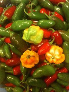 Pretty Peppers :-)