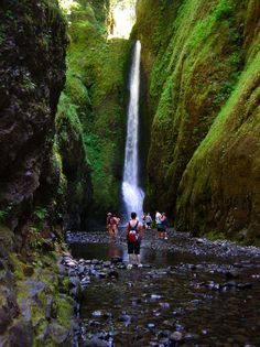 The Oneonta Gorge is in the Columbia River Gorge in the American state of Oregon. Oregon is known for its beautiful scenery. Oregon Vacation, Oregon Travel, Travel Usa, Beautiful Places To Visit, Oh The Places You'll Go, Places To Travel, Travel Destinations, Columbia River Gorge, Best Holiday Places