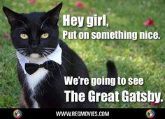 The Great Catsby. #TheGreatGatsby #Cats
