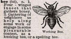 Vintage Bee Dictionary Definition via http://knickoftimeinteriors.blogspot.com/
