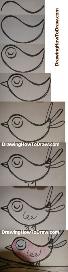How to Draw Cartoon Birds Simple Step by Step Drawing Lesson for Children