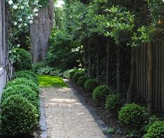 Design Sleuth: An Elegant Gravel Path via Gardenista