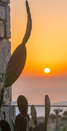 Villas Milos in Agia Pelagia in Heraklion, Crete Hotels In Crete Greece, Visit Greece, Parquet Paris, Renovation Parquet, Heraklion, World Pictures, Beautiful Sunrise, Sunset Photos, Greek Islands