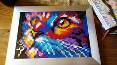 Rainbow cat hama beads by misstech