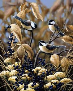 Chickadees - Late Fall by Bradley Jackson Paulette White-Nature Up Close