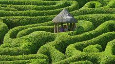 Un trayecto por cualquiera de estos hermosos laberintos de plantas es una invitación a la contemplación y la paciencia