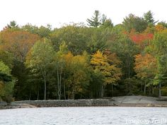 Fall foliage at Camp #Yawgoog!  A 2015 image from the Ashaway Aquatics Center by David R. Brierley.