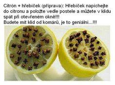 Citronem proti komárům