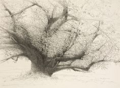 Pen and ink drawings by Mary Sprague: Luber's Tree, 2007  Gusts...