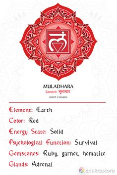 Root Chakra Meditation, Root Chakra Healing, Root Chakra Stones, Red Chakra, Chakra Art, Muladhara Chakra, Words Of Gratitude, Human Design System, Chakra Alignment