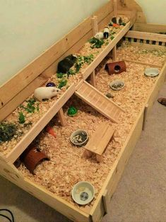 Guinea Pig Hutch, Guinea Pig House, Pet Guinea Pigs, Guinea Pig Care, Diy Guinea Pig Toys, Cavy Cage, Hamster Cages, Pet Cage, Indoor Guinea Pig Cage