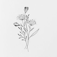 Illustration Tattoos And Body Art floral tattoo designsOooooooh Montag. Illustration Tattoos And Body Art floral tattoo designs Simple Flower Drawing, Floral Drawing, Simple Flowers, Drawing Flowers, Painting Flowers, Art Floral, Line Art Flowers, Leaf Drawing, Floral Tattoo Design