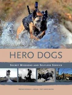 Today's specially trained war dogs--like the anonymous canine hero that took…