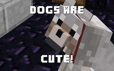 This is true Minecraft Dogs, Dog Wallpaper, Cute, Animals, Animales, Animaux, Kawaii, Animal, Animais
