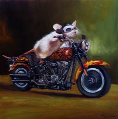 Motorcycle Mouse by Lucia Hefferman House Mouse, Wild Ones, Squirrel, Animal Pictures, Funny Animals, Fantasy Art, Illustration Art, Illustrations, Graffiti