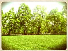 Medical garden Golf Courses, Medical, Garden, Garten, Medicine, Lawn And Garden, Gardens, Gardening, Med School