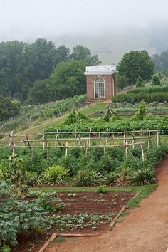 The kitchen garden at Monticello, the home of Thomas Jefferson