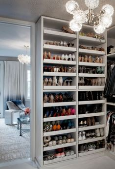 Pull out shoe shelves