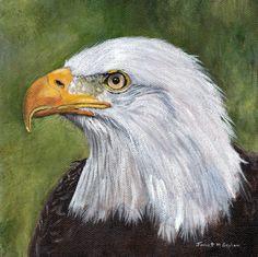 Original Bird Painting American Bald Eagle Bird Wildlife SFA Original hand painted bird acrylic painting by Australian Artist Janet M Graham