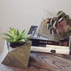 Today we are sharing our DIY concrete planters we made this past weekend using cardboard molds. This was a fun, easy and inexpensive home decor project.