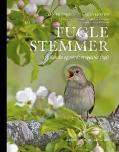 fuglestemmer     Deense en noord-europese-vogels