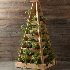 Pyramid-Shaped Cedar Garden Planter