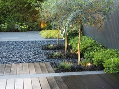In this minimal backyard, a variety of wood and stone hardscapes pair with foliage plants for a soothing green and gray color palette. A wooden walkway charts a bath through the landscape.