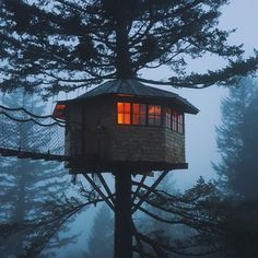 Foster Huntington Is Living Your Most Whimsical Treehouse Dreams Foster Huntington, Jardin Decor, Cool Tree Houses, Cabin In The Woods, Before Sunrise, Skate Park, Cinder, In The Tree, Big Tree