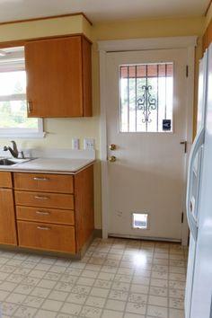 Kitchen Door - Before