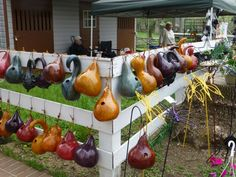 Apple Gourd Birdhouse | These birdhouses are made out of gourds and the birds really do like ...