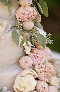 20 ideas for wedding cakes vintage color schemes Romantic Wedding Flowers, Wedding Cake Roses, Dusty Rose Wedding, Wedding Cakes, Orange Wedding, Elegant Wedding, Vintage Color Schemes, Wedding Color Schemes, Wedding Colors