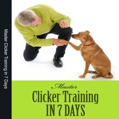 Clicker Training - Clicker train your dog in 7 days!