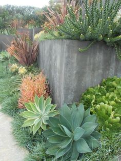Garden Landscaping Create a drought-friendly landscape. (Originally featured on a California-Friendly Landscape Contest hosted by Roger's Gardens in Orange County, CA) -