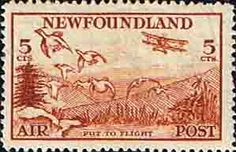 Newfoundland 1933 Air Mail SG 230 Fine Mint Scott C13 Other North American and British Commonwealth Stamps HERE!