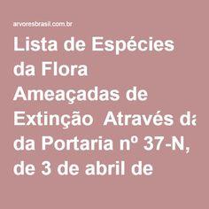 Lista de Espécies da Flora Ameaçadas de Extinção  Através da Portaria nº 37-N, de 3 de abril de 1992, o IBAMA tornou pública a lista oficial de espécies da flora brasileira ameaçada de extinção.