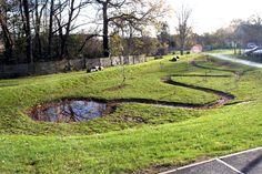 Snaking swale and circular basin - playful yet space efficient.  Birchen Coppice School