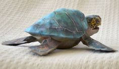 Zoo Tycoon - Green Sea Turtle Free Papercraft Download