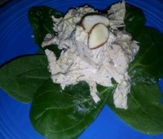 Fast Paleo » Chelsey's Chicken Salad - Paleo Recipe Sharing Site