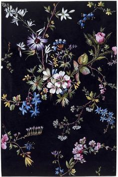 Design from an album of designs for printed textiles by William Kilburn. Textiles, Textile Prints, Whatsapp Wallpaper, Wallpaper Backgrounds, Wallpapers, Floral Illustrations, Illustration Art, Flower Prints, Flower Art
