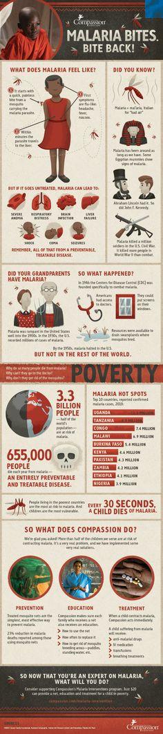 World Malaria Day 2013 Infographic.jpg