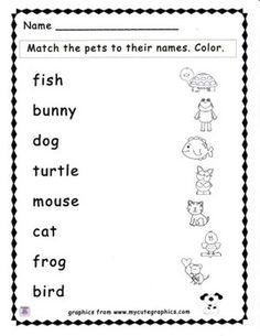 Pets, Animals, Language Worksheet, Worksheet, No Prep Matching, Coloring - Match the Pet to the Name