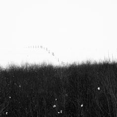 Winter landscape by Attila Simon Winter Landscape, Fence, Monochrome, Fine Art, Black And White, Nature, Photos, Photography, Attila