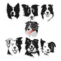 Border Collie SVG Cuttable Designs
