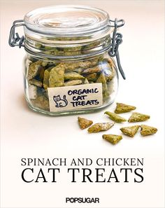 These spinach and chicken cat treats are easy for you to to make and delicious for you cat to enjoy!