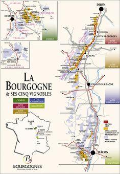 Bourgogne or Burgundy Wine Region of France Burgundy Wine Map, Guide Vin, Wine Paring, Wine Vine, Wine Folly, Wine Education, French Wine, Wine Cocktails, In Vino Veritas