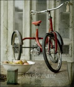Tricycle.  I had one similar- need to look for an image.