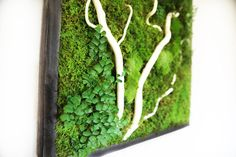 18x18 Plant Painting® No Care Green Wall Art.