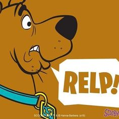 Scooby Doo Scooby Doo 1969, New Scooby Doo, Best Cartoons Ever, Cool Cartoons, Scooby Doo Images, Scooby Doo Mystery Incorporated, Shaggy And Scooby, Scooby Snacks, Cartoon Wallpaper